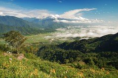(fjny) Tags: sky mountains clouds geotagged searchthebest taiwan explore daylily hualien    fuli    geo:tool=gmif geo:lat=23207482 geo:lon=121308979 mtliuoshihdan