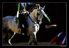 Duelo al sol (Chema Concellon) Tags: plaza espaa caballo spain toro claroscuro palencia duelo tauromaquia castillaylen rejoneo banderillas 100vistas chemaconcelln newphotographers colorphotoaward