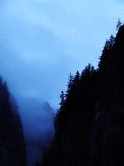 Mountain Ravine (alex) Tags: blue trees cloud mountains switzerland ravine gorge chasm jungfrau stechelberg