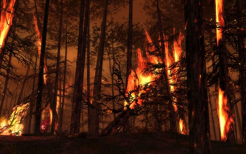 Burning Trees 2