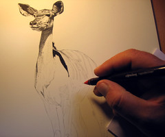 Kudu Antelope . work in progress (pbradyart) Tags: bw art pen ink artwork drawing antelope fabulous artisticexpression pointallism 2549faves creativephoto 25faves flickrspecial golddragon naturesgallery mywinners platinumphoto aplusphoto naturewatcher goldstaraward flickrestrellas exquisiteimage