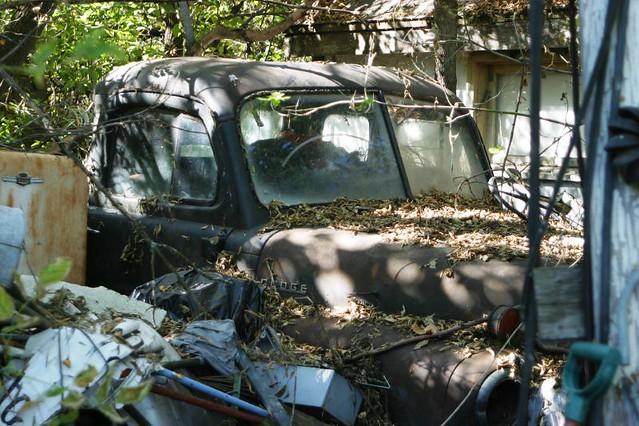garden september northdakota 2007 walkaround grandforks thisismycity davisgardens lotsojunk
