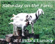 Saturday on the Farm at Linda's Lunacy