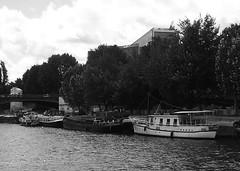 P1010314 (oxpride85) Tags: paris monuments bateauxmouches laseine