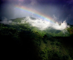 Sunshower (Rick Elkins) Tags: newcastle rainbow rainforest searchthebest bluemountains jamaica tropical sunshower naturesfinest supershot coffeeplantations elevation4500feet anawesomeshot superaplus aplusphoto superbmasterpiece diamondclassphotographer focuslegacy excapture nocoal goldenwinners rickelkins