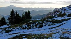 LPT_0338 (Lewis in Washington) Tags: snow hiking mountrainier 2008 mountadams scrambling plummerpeak