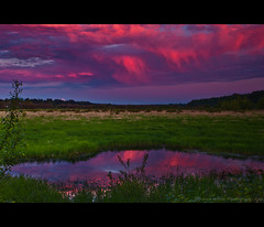 La Center Sunset (Darren White Photography) Tags: sunset sky reflection clouds wetlands pacificnorthwest washingtonstate mounthood lacenter experiencewa darrenwhite darrenwhitephotography