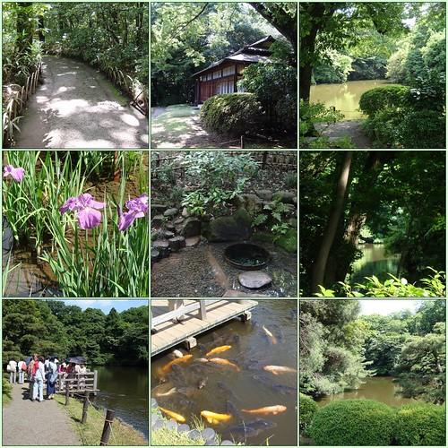 Meiji Shrine's Inner Garden (Tokyo)