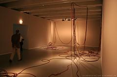 documenta 12 | Sheela Gowda / And ... | 2007 - An Tell Him of My Pain | 1998 | Fridericianum