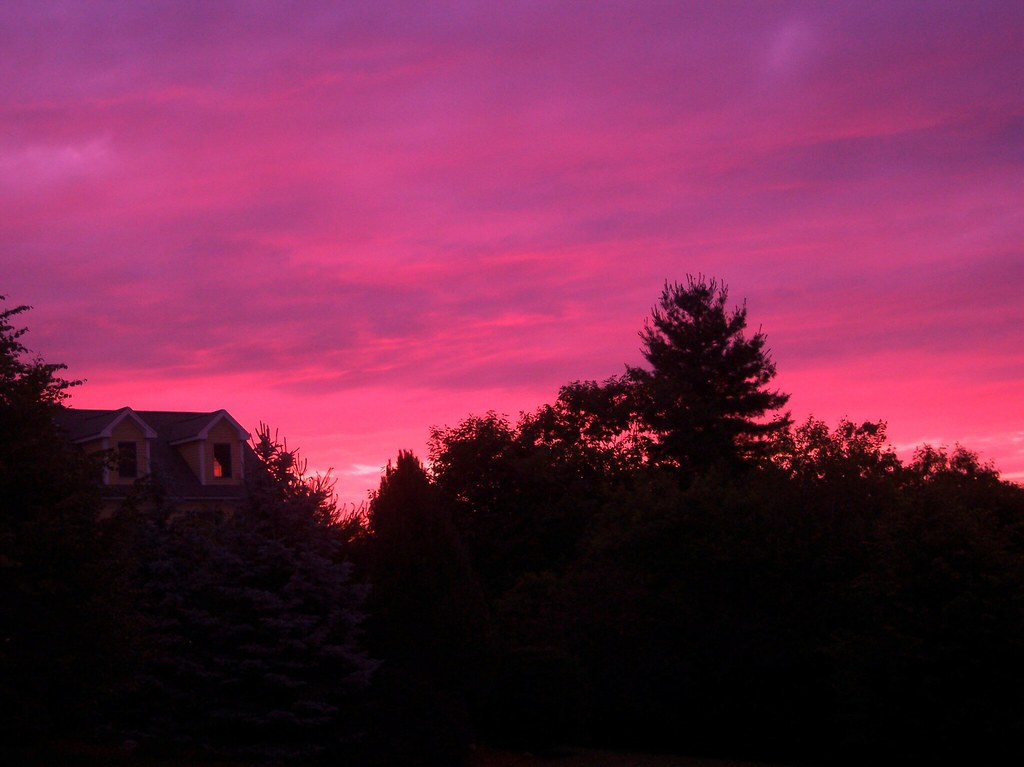 Summer Pink Sky