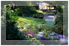 Garden at Brigadoon