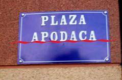 Calle Plaza Apodaca copia