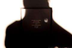 documenta 12 | Gonzalo Diaz / Eclipsis | 2007 | Neue Galerie