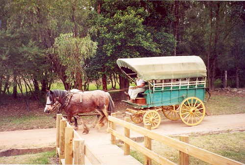 Old Sydney Town: Somersby: horse-drawn wagon