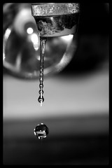 Follow your big sister (fatty_cyp) Tags: bw water frozen drops slow dream falling moment waterdrops dropping supershot