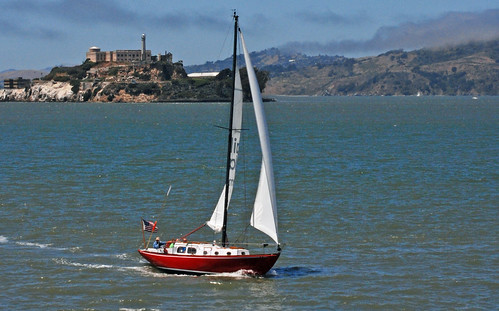 sailing the bay