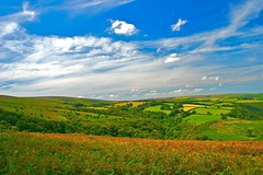 England My England (Nala Rewop) Tags: blue sky clouds coast perfect photographer searchthebest heather devon valleys exmoor mywinners excellentphotographerawards excellentscenic excapture thatsbostin theperfectphotographer