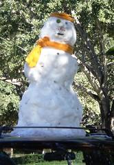 Rio Grande Valley Snowman