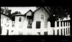 dog at the fence (rob_fuel) Tags: blackandwhite bw panorama dog house film fence austin lomo lab waiting labrador texas pano panoramic wait homestead playful horizon202 lomographic