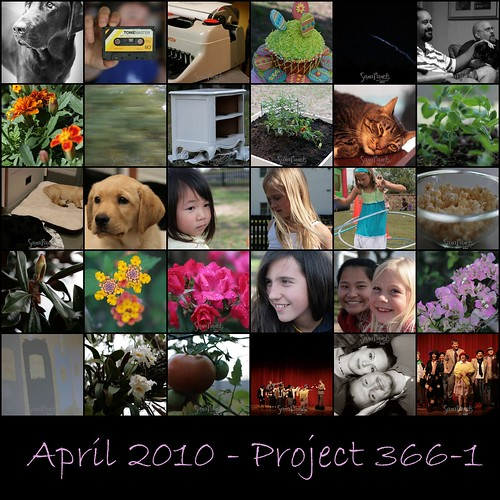 April Project 3661 Mosaic-1