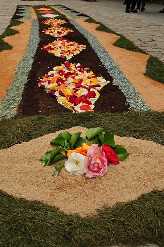 Catifes de flors durant el corpus