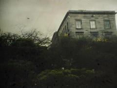 (rosa_rusa) Tags: ireland dublin misty irlanda ballsbridge rosarusa