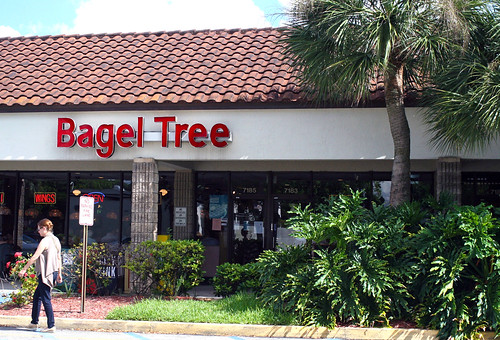 The Bagel Tree - strip mall breakfast