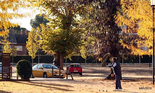 en aranjuez  17-11-2010 17-57-55