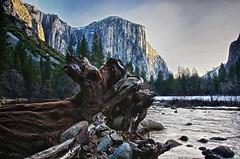 Morning on the Merced (errantpixels) Tags: california yosemite elcapitan hdr mercedriver