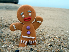 Gingerbread Man (justkelly) Tags: portrait silly beach shrek norfolk dreamworks atlanticocean gingerbreadman aperturepriority olympusc7000