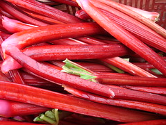 pink rhubarb, Trout Lake Farmers' Market