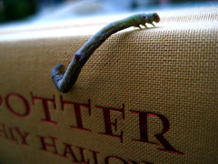 Book worm (heyitsgarrett) Tags: book harrypotter inchworm