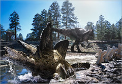 14 Big Al catches a glimpse on a trapped Stegosaurus