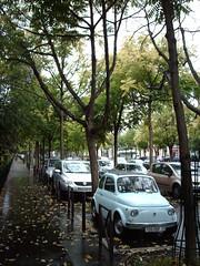 Little car (hugovk) Tags: camera autumn paris france tree car digital automobile fiat little september 500 hvk montparnasse fiat500 2007 syksy littlecar syyskuu ranska pariisi imag1354 hugovk exif:ISO_Speed=50 exif:Focal_Length=77mm digitalcamerads5mp exif:Flash=autodidnotfire exif:Exposure=142 exif:Aperture=30 exif:Exposure_Bias=0 ds5mp camera:Model=ds5mp camera:Make=digitalcamera meta:exif=1380191513