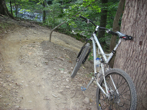 forest hill switchback