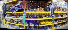 Autostitched Hallowe'en decorations! (Steve Brandon) Tags: decorations autostitch panorama ontario canada halloween shop retail pumpkin geotagged death spider hardwarestore s