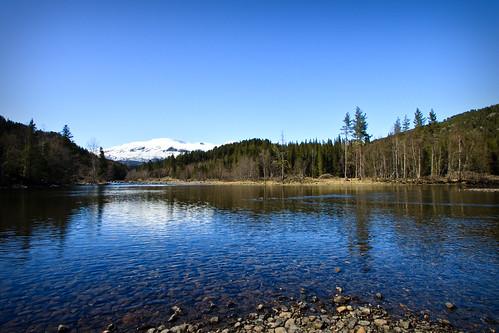 Calm Spring River