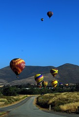 Temecula - balloon and wine festival (Annie is back) Tags: tag3 taggedout tag2 tag1