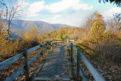 trail into the woods (Refocus Photography) Tags: bridge autumn trees sun fall leaves forest outdoors shadows branches trail