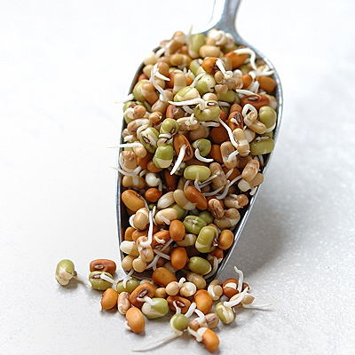 sproutsmahanandi