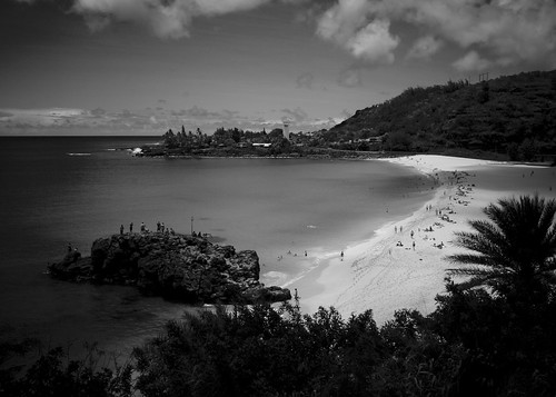 Waimea Bay Black and white