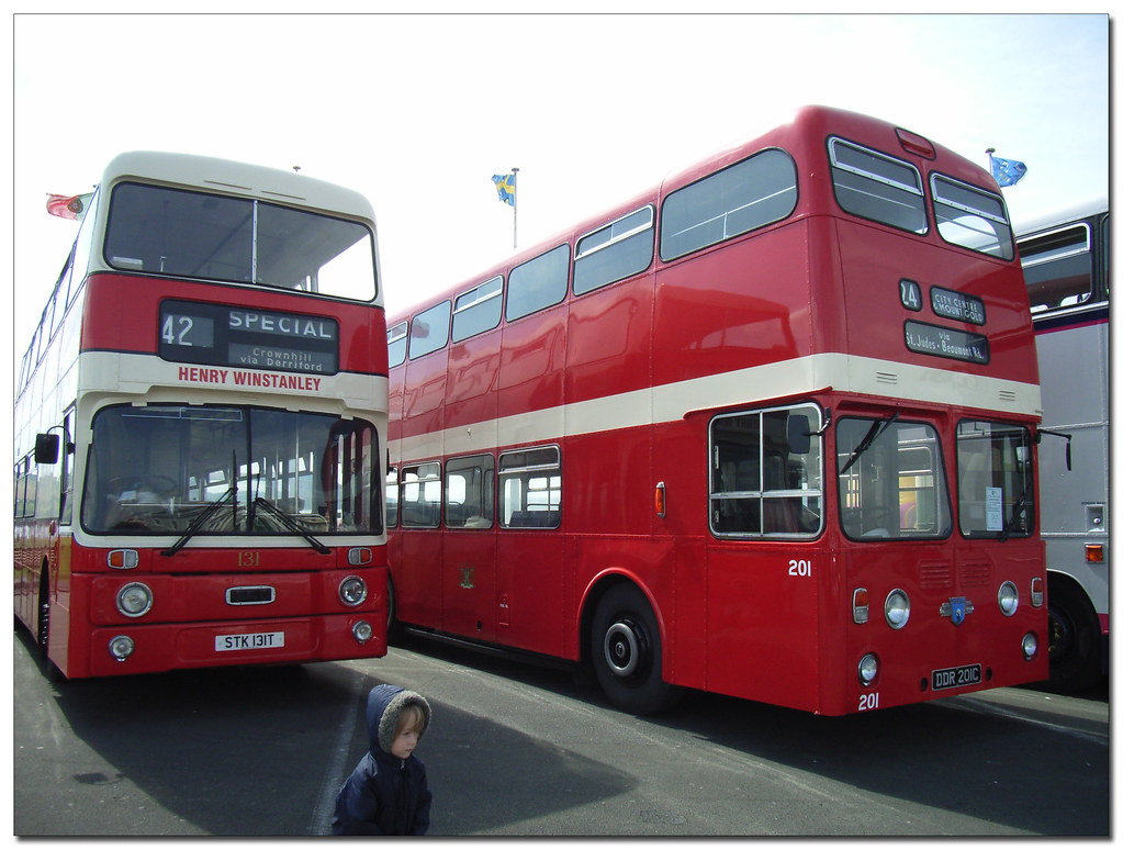 Plymouth Citybus 131 STK131T 201 DDR201C and Zak! (by didbygraham)