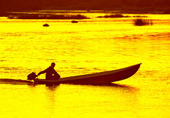 yellow river (Henri Bonell) Tags: sunset yellow finland river evening boat europe breathtaking supershot henribonell holidaysvacanzeurlaub superbmasterpiece infinestyle goldenphotographer diamondclassphotographer superhearts flickrelitegroup