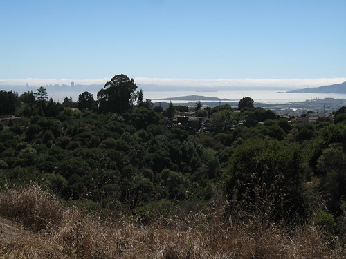 san francisco view from east bay hills