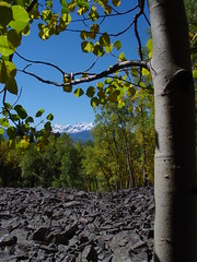 OOPPSS!! Great accident.... (shutter~bug) Tags: travel autumn trees winter summer vacation sky sun moon snow mountains color fall nature colors beautiful leaves night landscape landscapes spring san colorado peace seasons juan scenic rocky sanjuan western aspens montrose slope mts sanjuanmountains southwestcolorado