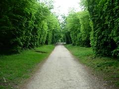 Put kroz šumu - Chantily