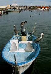 PC310097.JPG (Just a Pilgrim) Tags: cruise mexico loreto 0812