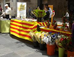 Sant Jordi Vilanova Geltru 2010 018b