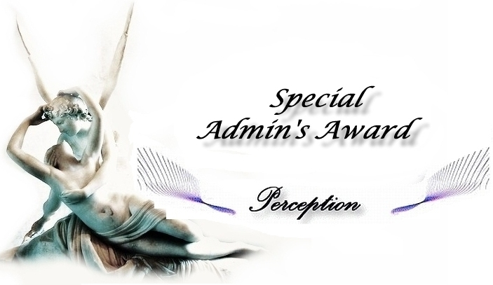 perception special admin 04