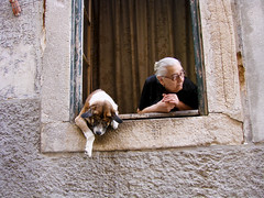 Old friends (birthmarkleg) Tags: friends woman dog house amigos cão portugal window animal casa lisboa oldwoman janela blueribbonwinner bairrodabica abigfave superaplus aplusphoto